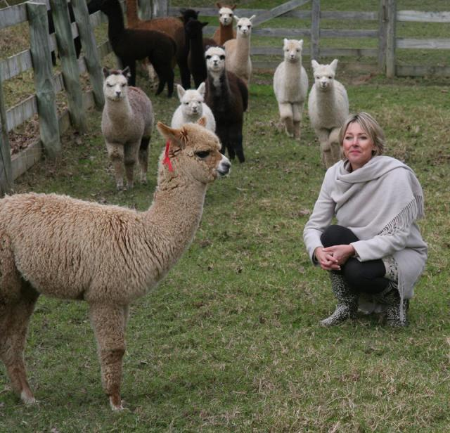 alpacas and me crouching